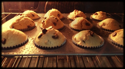 Olfactory Kitchen: Chocolate Chip Muffins